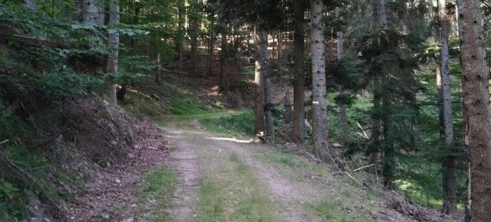 Définiton trekking randonnée - site de rando pédestre